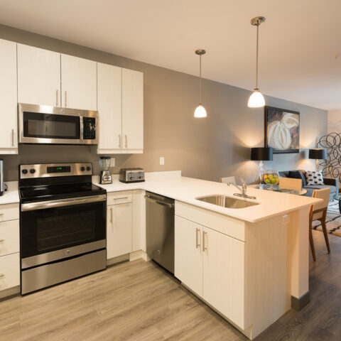 picture of kitchen in apartment in wilmington de